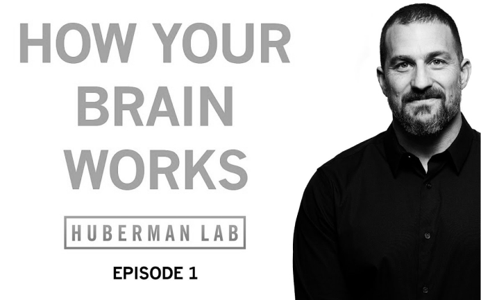 How Your Nervous System Works & Changes | Huberman Lab Podcast #1